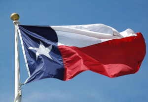 Texas Truck Insurance - Texas commercial auto insurance. We insure big rigs and a whole lot more (844) 308-5321.